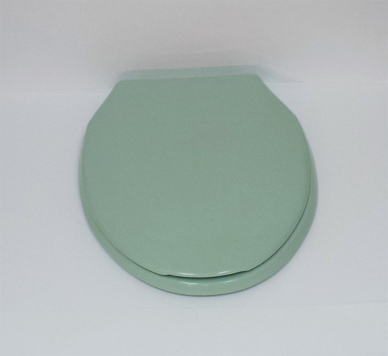 Astonishing Pale Jade Elongated Toilet Seat Ocoug Best Dining Table And Chair Ideas Images Ocougorg